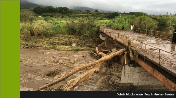 Debris Blocks Water Flow in Iao Stream